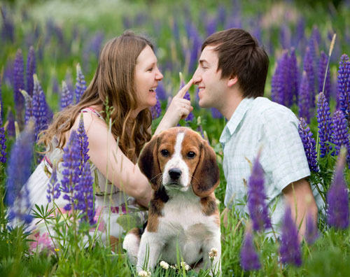 want to impress your girlfriend impress her pet - Lifestyle News in Hindi