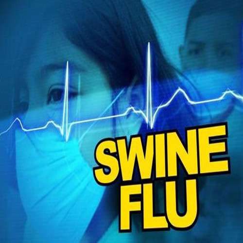 swine flu in hindi Swine flu vaccine in hindi articles: get information on swine flu vaccine in hindi read articles and learn about all the facts related to swine flu vaccine in hindi from our health website .