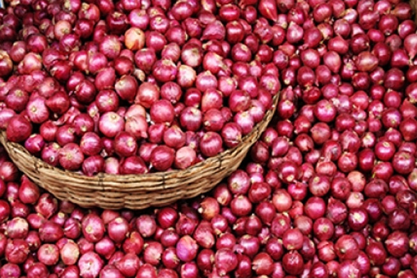 onion stock limit for retailers lowered to 2 tonnes 417882