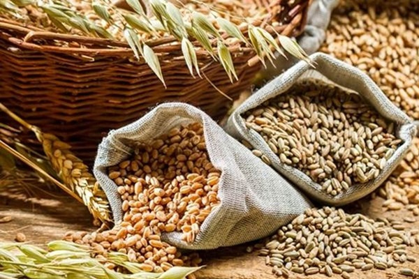 the country produced a record 2957 million tonnes of food grains this year 440884