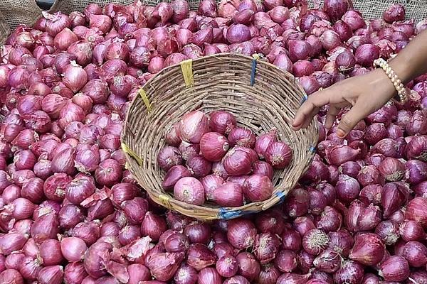 onion production up 17 percent second advance production estimate 442207