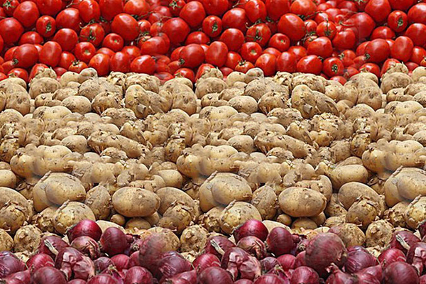 prices of vegetables are not stopping in the festive season 455103
