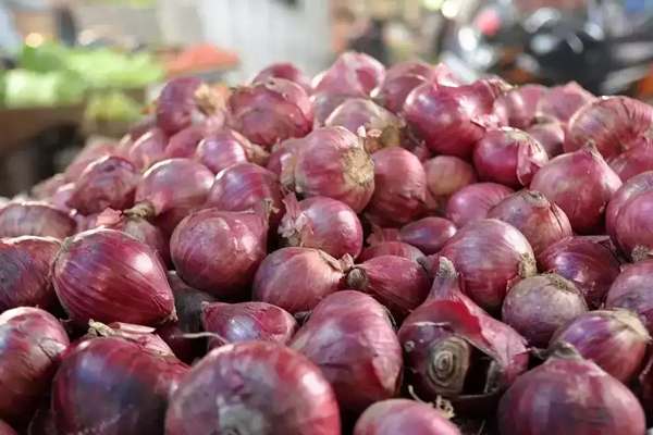 bumper crop of onion government to create record 2 lakh tonne buffer stock 471176