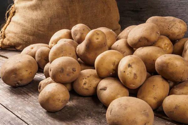 potato prices fall drastically 472702