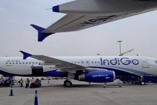 indigo launches door to door baggage transfer service 474151