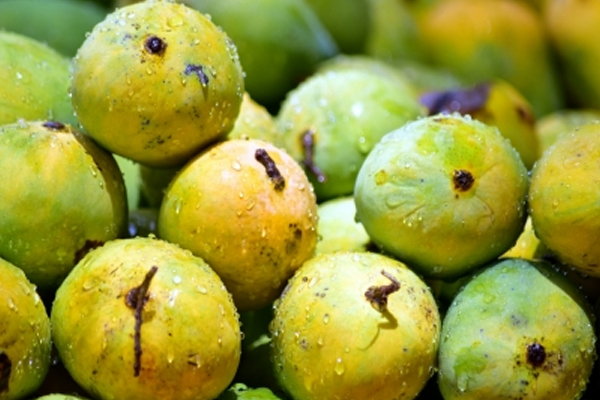 mango growers hit again by corona curfew 478519