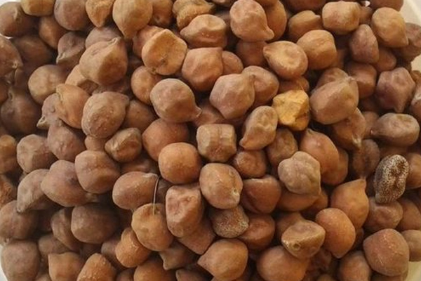 purchase of chana on support price till june 5 478894