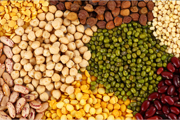 exercise to make the country self reliant in pulses and oilseeds 480281