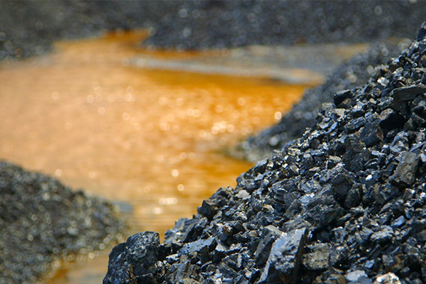 coal india will lay off employees at the rate of 5 percent per annum 481641