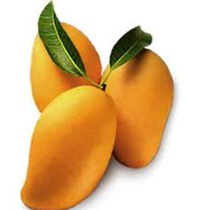 Mango may cost as production seen down by 20 percent