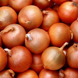 May increase the prices of onion