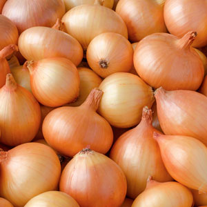 Onion stocks of about 4 MT stored in India: NHRDF