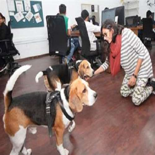 company of people who entered dogs are welcome - OMG News in Hindi
