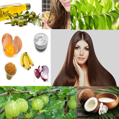 Get tips from natural black hair - Lifestyle News in Hindi