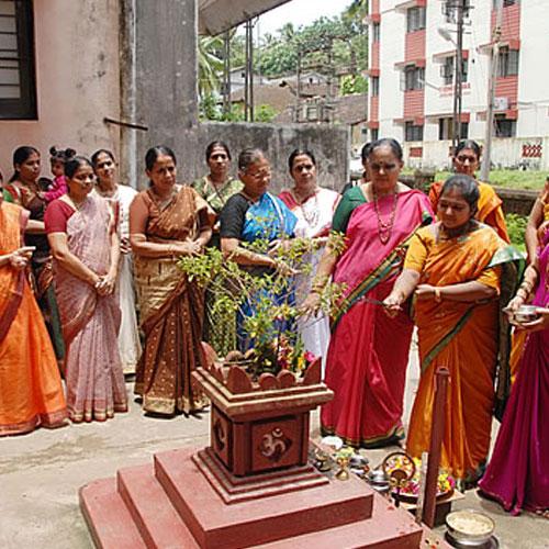 Image result for तुलसी के पेड़ की पूजा
