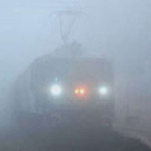 Delhi wakes up to dense fog - India News in Hindi