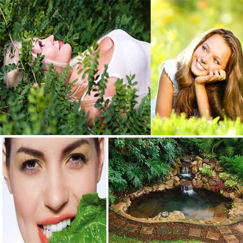 lifestyle  tips to health benefits of green color - Chandigarh News in Hindi