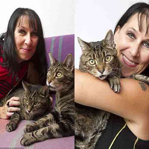 ajabgajab woman who is celebrating a decade of marriage to her two pet cats - Jaipur News in Hindi