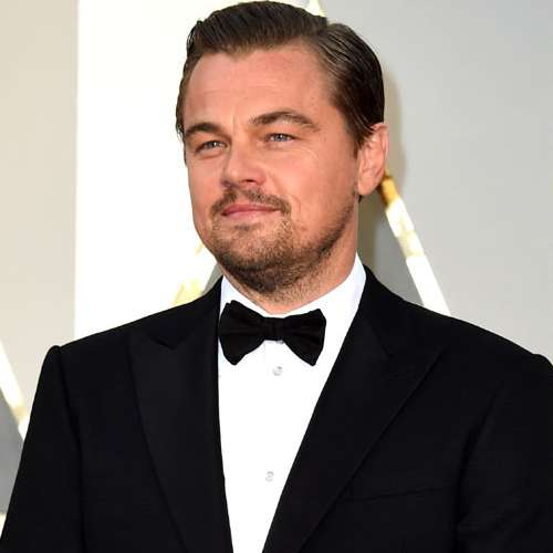 Leonardo DiCaprio took up beekeeping to handle stress - Hollywood News in Hindi