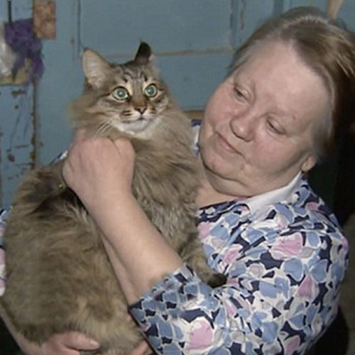 Ajabgajab Cat Saves Russian Baby Abandoned In