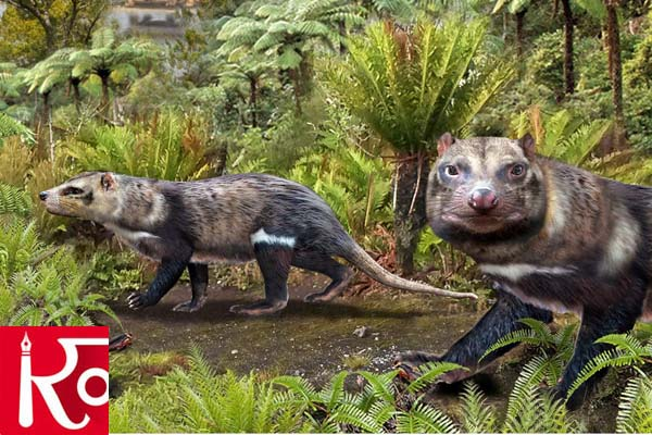 Fossil Of A Skunk-Like Mammal Discovered By Scientist