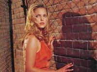 Katherine Heigl, American Film Actress Katherine Heigl Gallery, Model Katherine Heigl Wallpapers Wallpapers