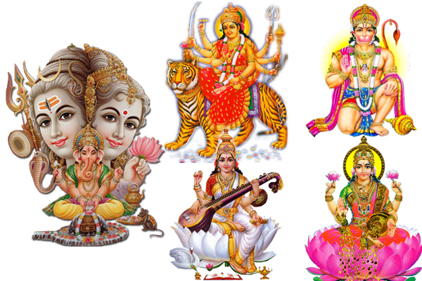Know, from which flower god and goddess get pleased - Puja Path in Hindi