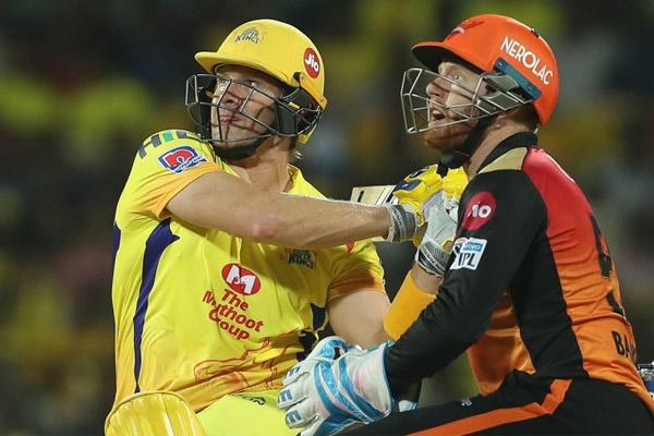 Shane Watson completes 8000 runs in t20 cricket, see top 5 batsman - Cricket News in Hindi