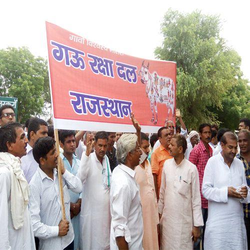 Gau Raksha Dal marches rally in churu - Churu News in Hindi