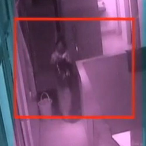 woman drop her 15 days old nephew from third floor of a hospital - Kanpur News in Hindi