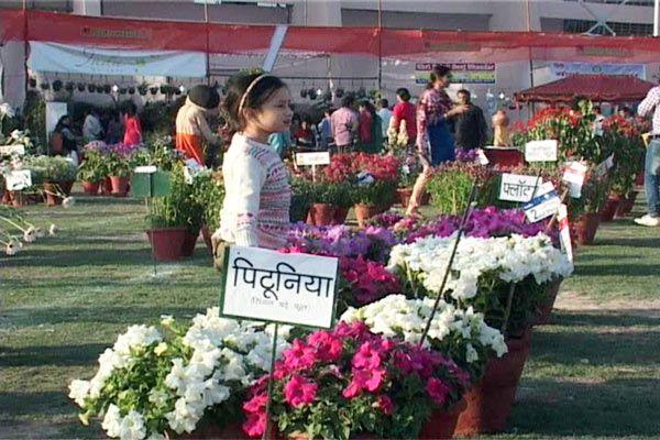 Noida Stadium began a three day flower show - Noida News in Hindi