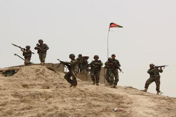 24 Taliban militants killed in Afghan gun battles - World News in Hindi