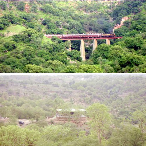 Forest excursion in Ravali Tadgdh Wildlife Sanctuary - Udaipur News in Hindi
