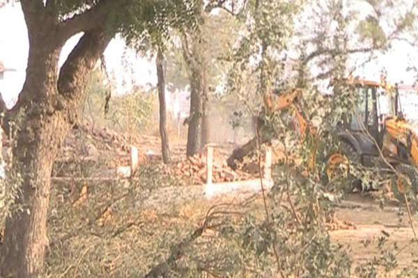 Influence collapsed under the impact of the green trees, the police team returned - Churu News in Hindi