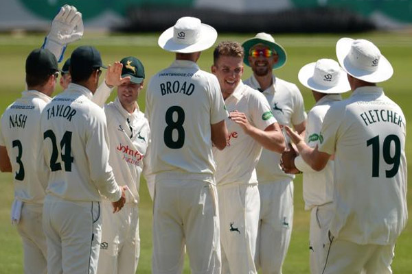 Ashes Series : England and Australian players to wear names and numbers on shirts - Cricket News in Hindi
