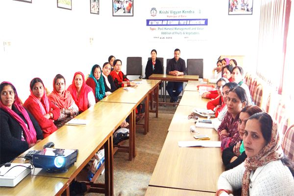 ladies learning the tricks to make Fruit sweets - Hamirpur News in Hindi