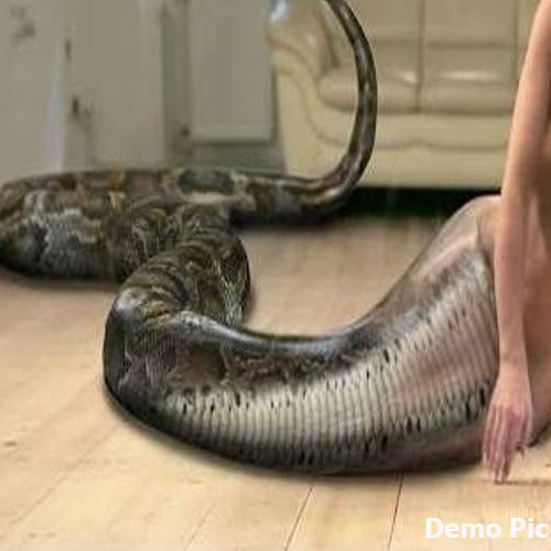 Girlfriend turns into snake during physical pleasure in Nigeria - OMG News in Hindi