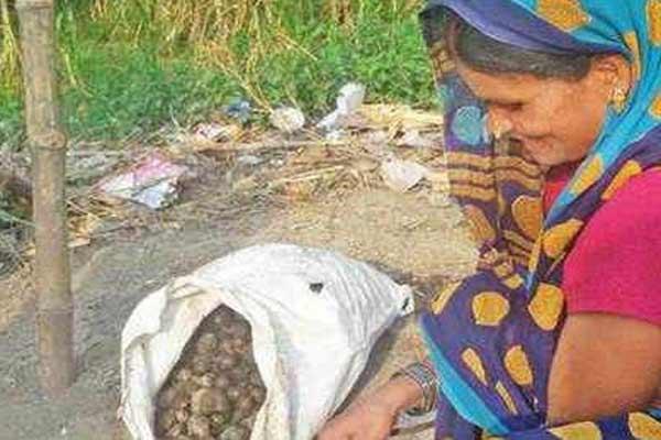 कुशीनगर: भूख और बीमारी से 5 मौतें, चूहे खाकर गुजारा!