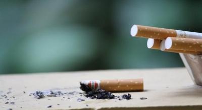 फेफड़ों के साथ-साथ जिंदगी पर भी असर डालता है धूम्रपान