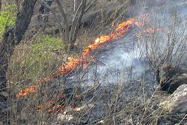 fire on hills of Harni Mahadev from spark of Cremation - Bhilwara News in Hindi