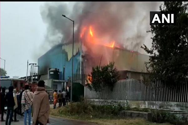 Factory fire in Neemrana, Alwar, no loss of life, see photos - Alwar News in Hindi