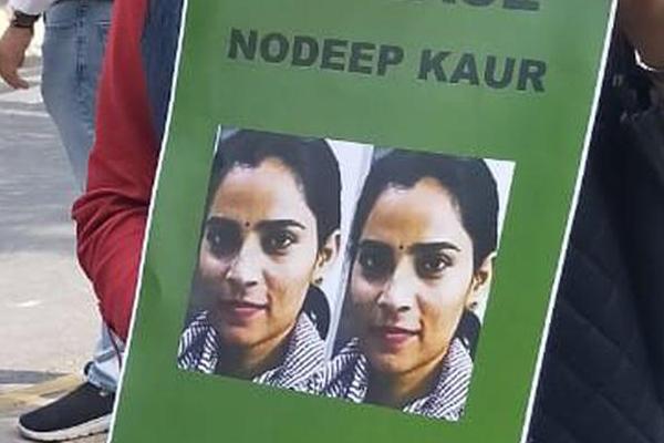 Activist Nodeep gets bail from Punjab & Haryana HC - Punjab-Chandigarh News in Hindi