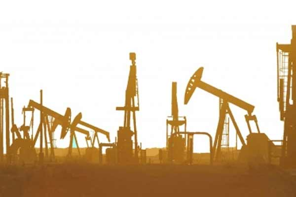 America will continue to export oil, gas to India: Price - World News in Hindi