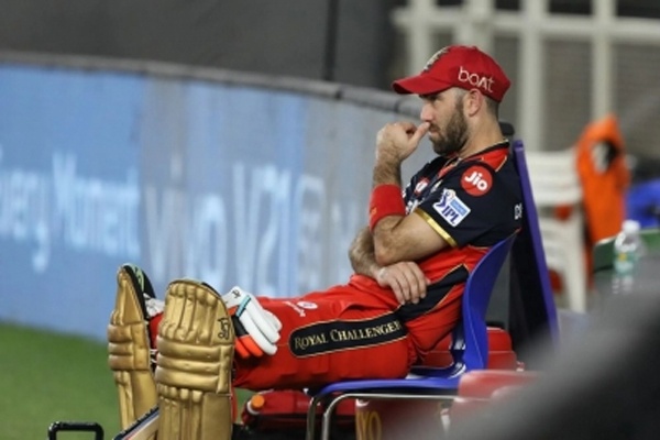Australian players who have been involved in IPL reached home - Cricket News in Hindi