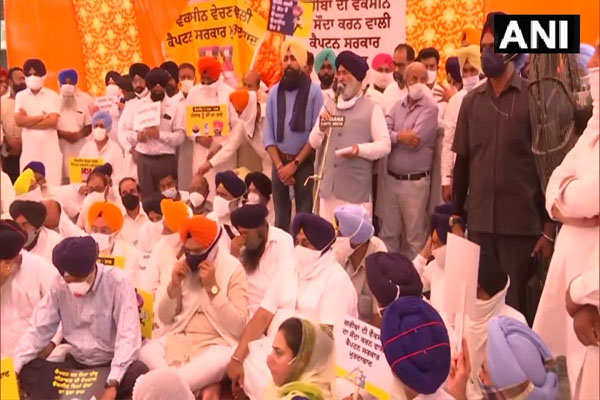 Akali Dal strikes outside Punjab Health Minister residence to protest against selling vaccine, see photos - Punjab-Chandigarh News in Hindi