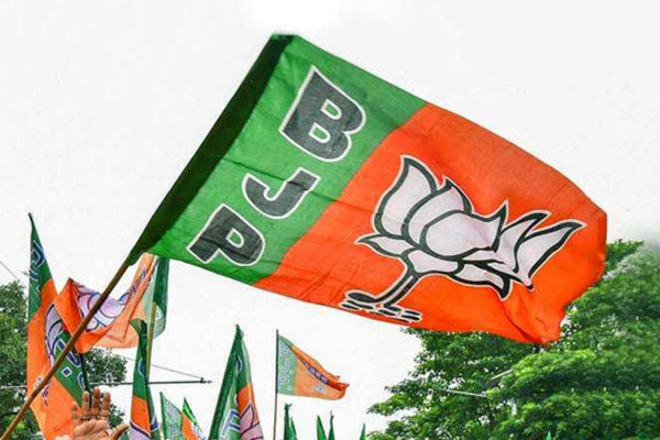 MP faces preference for new faces in BJP working committee - Bhopal News in Hindi
