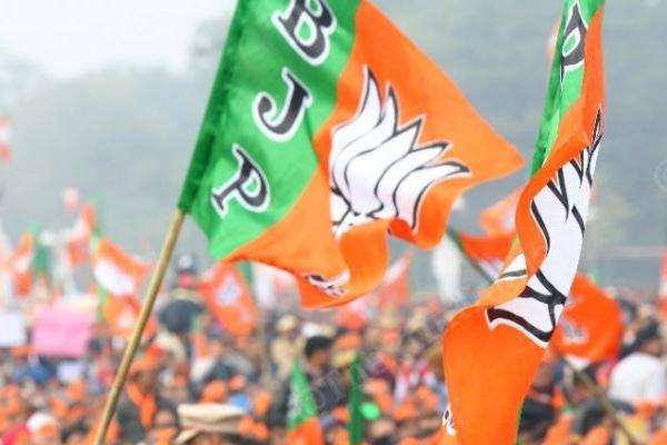 Gujarat Corporation Election: BJP wins in Bhavnagar, Jamnagar, Rajkot, Vadodara - gandhinagar News in Hindi