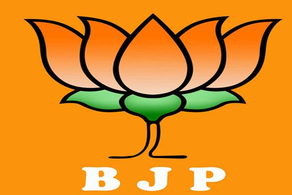 BJP on citizenship law - Delhi News in Hindi