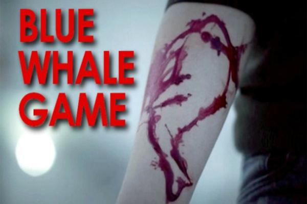 ब्लू व्हेल गेम ने हिमाचल में भी दी दस्तक, ब्लैड से बनाई ब्लू व्हेल की आकृति