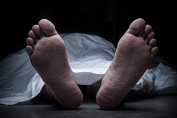 Bodies of two boys found hanging from tree in UP - Etawah News in Hindi